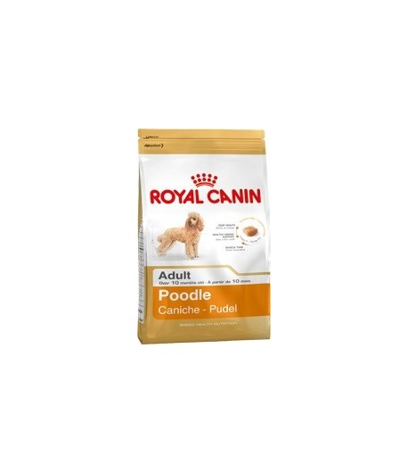 Royal Canin Barboncino