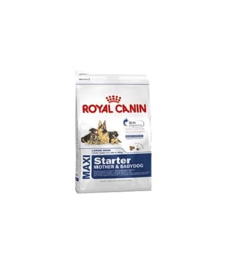 royal canin royal canin dog maxi starter m b. Black Bedroom Furniture Sets. Home Design Ideas
