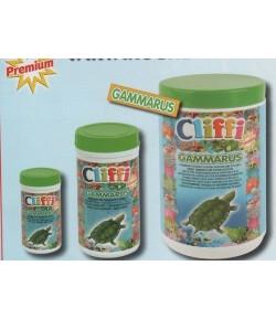 Cliffi Gammarus