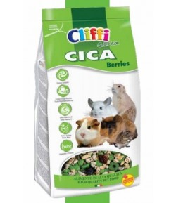 Cliffi, CICA Cincilla