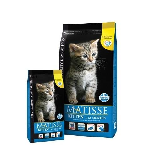 Matisse, Kitten