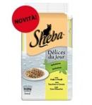 Sheba Delice du Jour-6 x 50 gr.