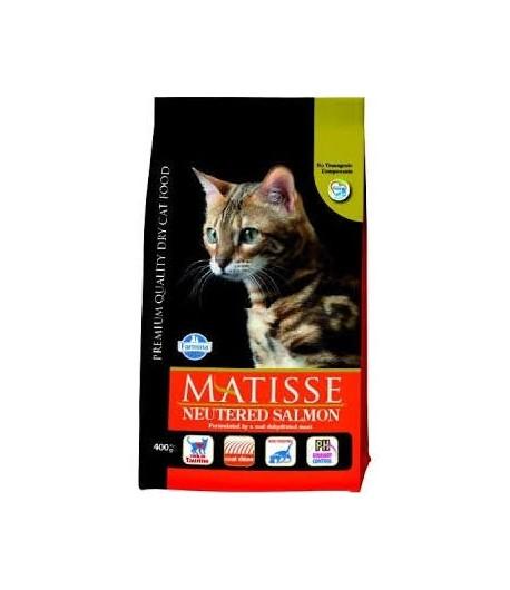Matisse, Adult Neutered Salmone
