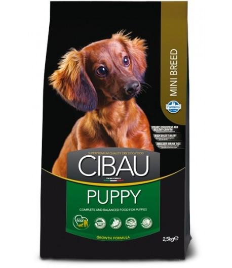 Cibau, Puppy Mini