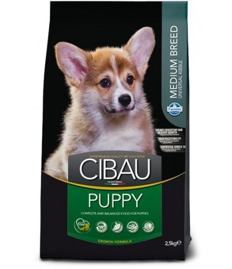 Cibau, Puppy Medium