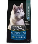 Cibau, Adult Medium/Maxi Sensitive Fish (Pesce)