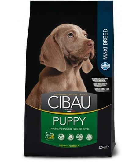 Cibau, Puppy Maxi