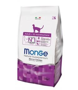 Monge Cat ADULT