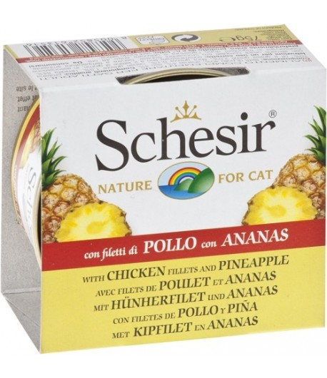 Schesir Cat Fruit 75 gr.