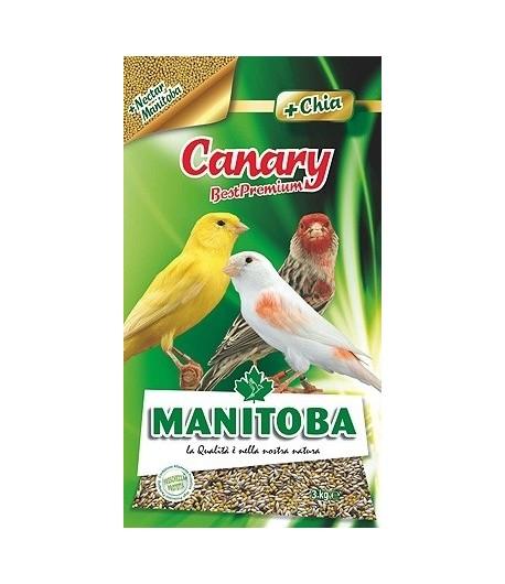 Manitoba, Best Premium Canarini