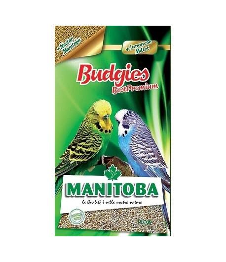 Manitoba, Best Premium Budgies-Cocorite