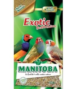 Manitoba, Best Premium Esotici