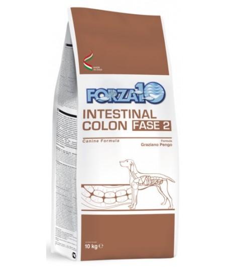 Forza 10 Active Line - INTESTINAL COLON FASE 2