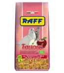 Raff, TORTOREL